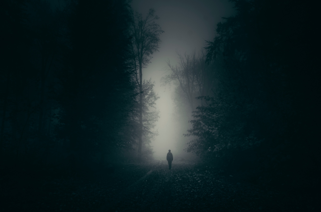 A misty scene in a dark forest with a person walking just on the horizon line edge into the gently glowing distance.
