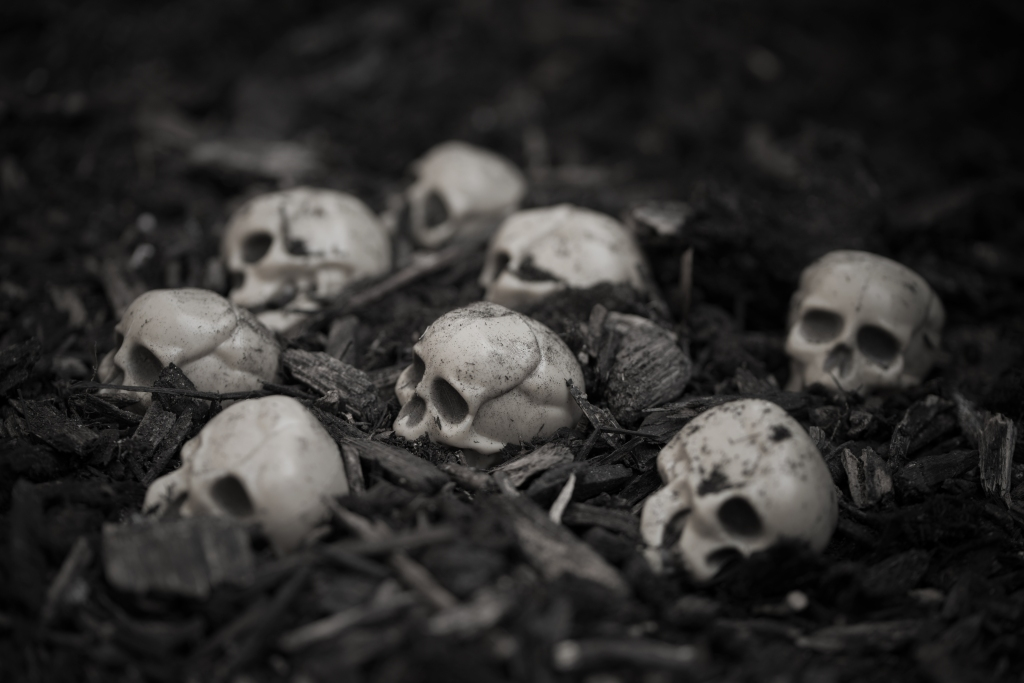 a pile of decorative white skulls lies amidst wood chips for a dreary, macabre mood